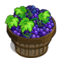 Shiraz Grape Bushel-icon