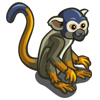 Squirrel Monkey-icon