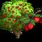 Cornelian Cherry Tree-icon