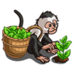 Monkey Picking Tea-icon