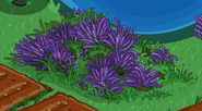 Lavender Knoll in game