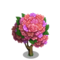 Rose Cluster Tree-icon