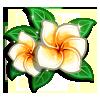 Unfolding Plumeria-icon
