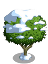Granny Smith Apple Tree7-icon