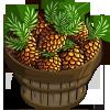 Pecan Pinecone Bushel-icon