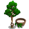 Rubber Tree-icon