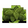 Thick Foliage-icon
