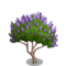 Vitex Tree-icon