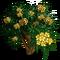 Yellow Plumeria Tree-icon