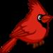 Cardinal-icon