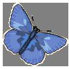Common Blue-icon