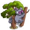 Giant Australian Boab Tree-icon