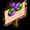 Mangosteen Mastery Sign-icon