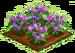Munckin Flowers 100