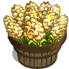 Popped Sorghum Bushel-icon