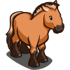 Przwalski Horse-icon