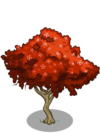 Gulmohar Tree1-icon