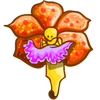 Rare Aerides Flower-icon