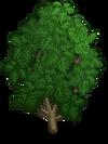 Breadfruit1-icon