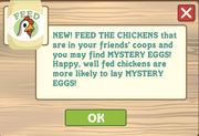 Feed the chicken