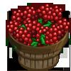 Ilex Berry Bushel-icon