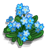 ForgetMeNot-icon