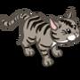 Grey Tabby-icon