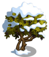Olive8-icon
