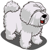 Sheep Dog-icon