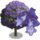 Jacaranda Tree-icon