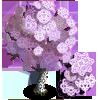 Lace Tree-icon