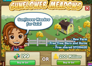 Sunflower Meadows Buy Message