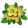 Yellow Myrtle Flower-icon
