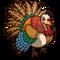 Fall Turkey-icon