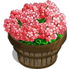 Coral Geranium Bushel-icon