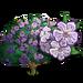 Sapphire Dragon Tree-icon