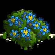 4th Birthday Bush-icon