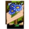 Blue Daisy Mastery Sign-icon