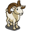 Dall Sheep-icon