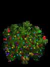 Giant Cocoa Tree6-icon