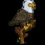 Bald Eagle-icon