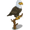 Bald Eagle-icon