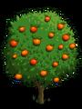 Blood Orange Tree2-icon.png