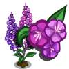 Fire Weed Full Bloom-icon