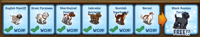 Mystery Game 157 Rewards Revealed