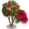 Rose Tree-icon