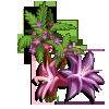 Willamsonia Tree-icon