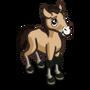 Asian Wild Foal-icon