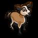 Barbados Sheep-icon