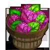 Ornamental Cabbage Bushel-icon